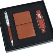 Набор: шариковая ручка, визитница, флеш-карта USB 2.0 на 1 Gb, арт. 000590703