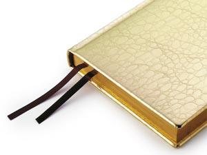 Золотой ежедневник
