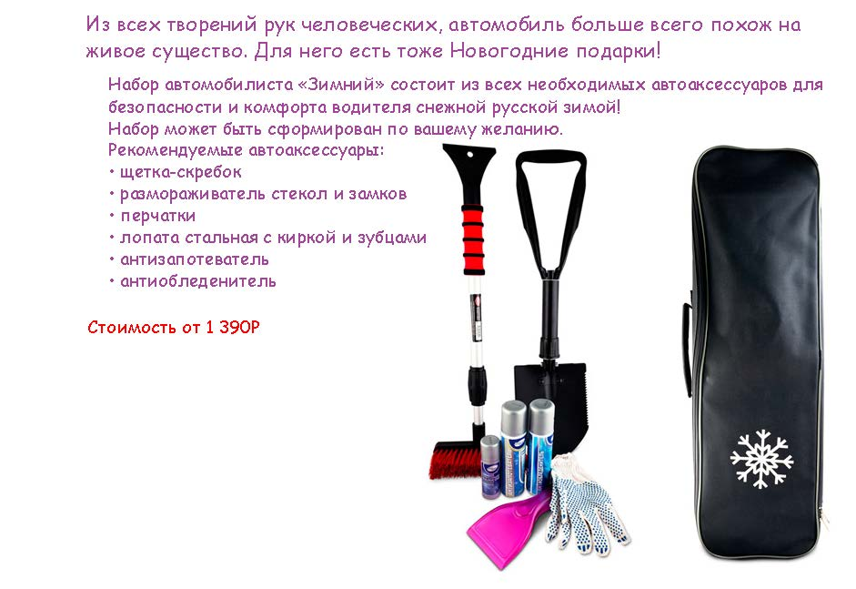 prezentation_ng_2017_stranitsa_13
