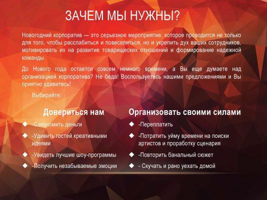 prezentatsiya-ng_2017_stranitsa_02