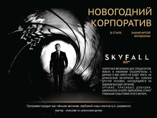 prezentatsiya-ng_2017_stranitsa_04