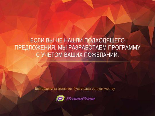 prezentatsiya-ng_2017_stranitsa_13