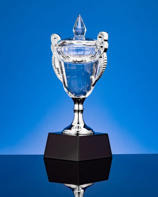 Кубок Victorious, малый, уценка