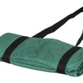 Плед Picnic с ремнем для переноски, зеленый, арт. 016679203