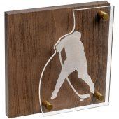 Награда Celebration, хоккей