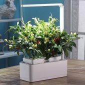 Компактный смарт-сад iGarden LED с подсветкой, арт. 019185403