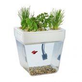 Набор для выращивания растений и ухода за рыбкой Акваферма, арт. 019185203