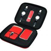 Подарочный набор USB-SET в кожанном исполнении в коробочке на 16 Гб, красный (16Gb), арт. 019446603