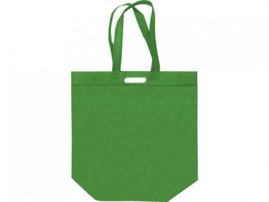 Сумка для покупок из спанбонда Ambit, 400*380*120 с ручкой 550/30 мм, зеленое яблоко, арт. 023813003