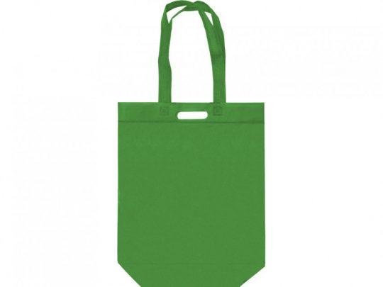 Сумка для покупок из спанбонда Scope, 380*455*160 с ручкой 550/30 мм, зеленое яблоко, арт. 023812503